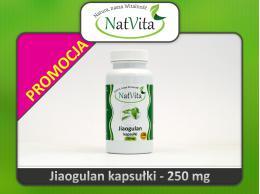 Jiaogulan kapsułki tabletki proszek - cena sklep zioło nieśmiertelności