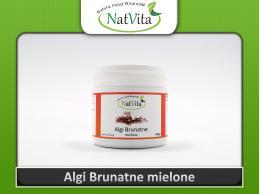 Algi brunatne Ascophyllum nodosum proszek cena sklep