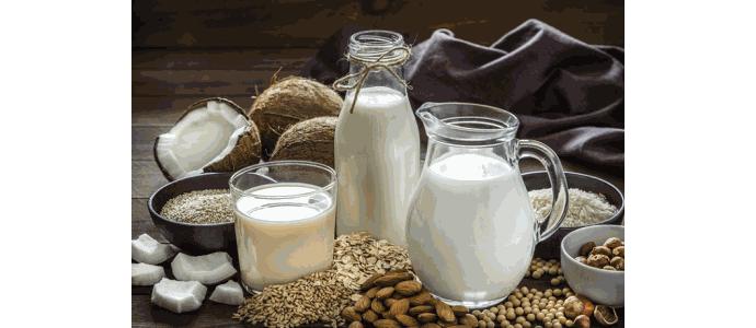 Białka roślinne jako pomoc przy budowaniu masy mięśniowej